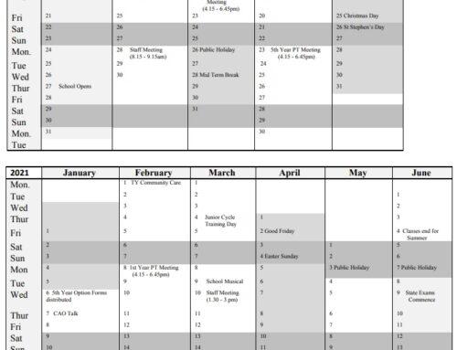 Ejemplo de calendario escolar en Irlanda curso 2020 2021